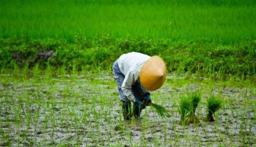 畑作業の時はどのような装備が良い?最適な装備についての説明と解説