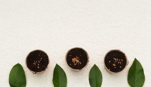種のまき方は3種類!野菜の種類それぞれに適した方法で種をまこう。