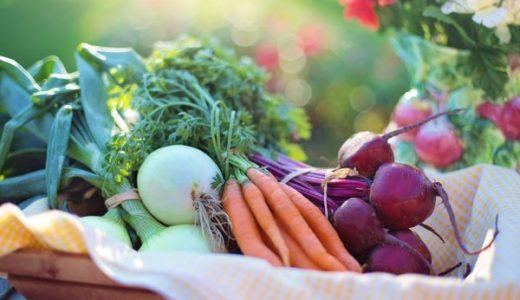 初心者でも簡単にできる!農薬を使わずオーガニック野菜を育てる方法!